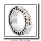 35 mm x 72 mm x 23 mm  SIGMA N 2207 cylindrical roller bearings