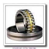 19.05 mm x 50,8 mm x 17,46 mm  SIGMA MRJ 3/4 cylindrical roller bearings